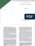 Kaufmann - Filosofia Do Direito (Final Cut)