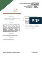 Laboratorio Electromagnetismo - Carga eléctrica y electrostática.pdf