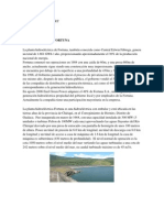 Informe Hidroelectrica Fortuna