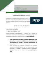 Planeacion Del Trabjo de Auditoria COPLASTIC