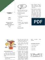 Mioma Uteri Leaflet