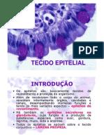 TECIDOS EPITELIAIS