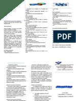 triptico  de gerencia de proyecto.docx
