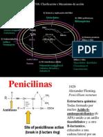 4.2. Penicilinas