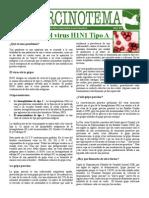 La Realidad Del Virus H1N1 Tipo A