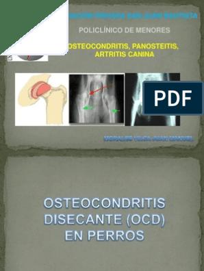 Enfermedades de Artritis, Panosteitis y Osteocondritis