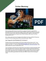 Tips Foto Di Kebun Binatang