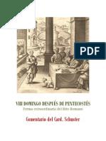 VIII DOMINGO DESPUÉS DE PENTECOSTÉS. card. schuster