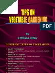 Tips on Vegetable Gardening
