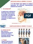 Habitos_que_danan_el_cerebro_y_la_salud.pps