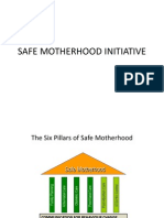 Safe Motherhood PDF