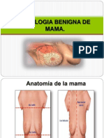 SEMINARIO MAMA.pptx