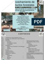 aprovechamiento-productos-forestales