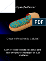 Instrumentação para o ensino em Bioquímica-Respiração Celular