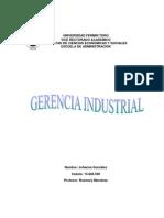 Gerencia Industria