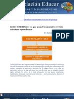 neuroplasticidad y redes hebbianas, continuacion.pdf