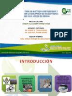 Ubic Para Un Nuevo Rrelleno Sanitario y Simulacion en La Generacion de Sus Lixiviados Caso de La CD de Mex IPN