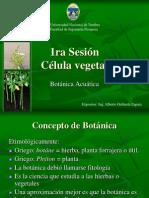Sesion 01. Célula vegetal