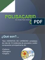 presentacion polisacaridos DXN
