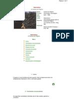 Manual Pratitico Em Agroecologia