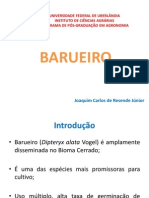 BARUEIRO.pdf