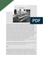Agricultura Urbana_Tubos PVC