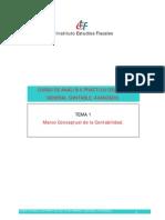 Curso Análisis Práctico Plan General Contable IEF 2012