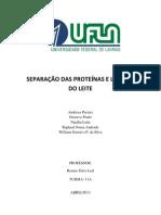 SEPARAÇÃO DAS PROTEÍNAS E LACTOSE DO LEITE- FINAL