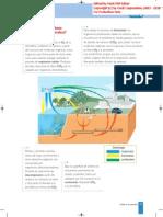MAQUETA CICLOS DEL CARBONO Y OXIGENO - Página 59