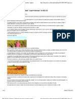 """BBC Mundo - Noticias - Polémico maíz para combatir"