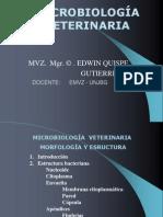 Micro I