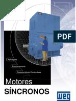 WEG Motores Sincronos Artigo Tecnico Portugues Br