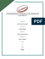 Investigacion Formativa _II