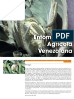 127283010 Entomo Fauna Venezolana