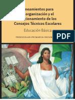 Lineamientos Consejo Tecnico Escolar 2013-2014