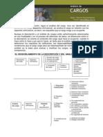 Estructura de Cargos Actividad 4