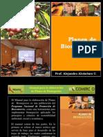 13.0. Planes de Bionegocios
