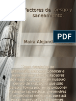 FACTORES DE RIESGO Y SANEAMIENTO