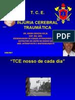 Injuria Cerebral Traumatica Cti 2008