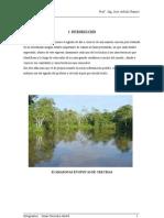Trabajo Del Rio Amazonas
