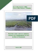 RELATÓRIO SOBRE O IMPACTO AMBIENTAL CAUSADO PELO DERRAMAMENTO DE ÓLEO  NA BAÍA DE GUANABARA