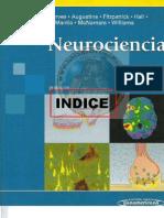 Purves - Neurociencia