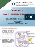 16.  Reticulo Endoplasmatico