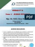 22.  Acidos Nucleicos
