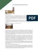 REALIDAD Y PROBLEMÁTICA DEL SECTOR PECUARIO 2