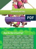 Karamunting (untuk presentasi)