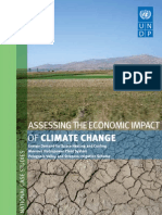 Assessing the economic impact of climate change