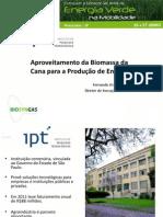 Biomassa Para Energia