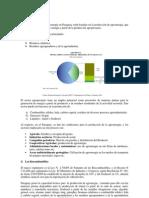 Analisis_de_la_Biomasa_en_Paraguay_Judith_Douglas.docx