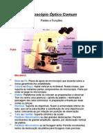 Microscópio e afins